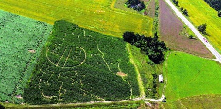 Lietuviškieji kukurūzų labirintai laukia nuotykių mėgėjų