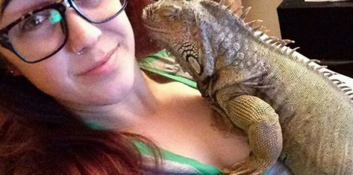Ar esate matę įsiutusią iguaną? Nenorėtumėte tokios sutikti!