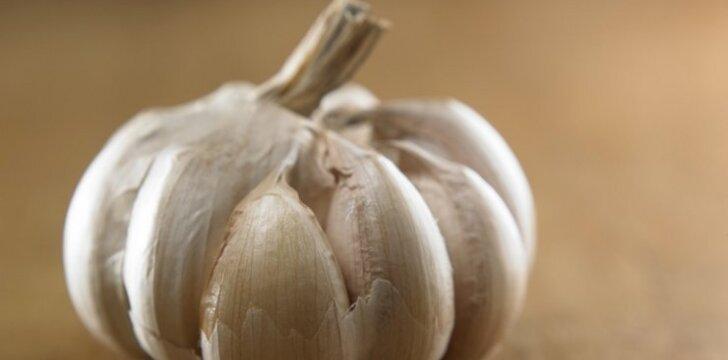 Česnako užpiltinė – vaistas nuo dešimties ligų