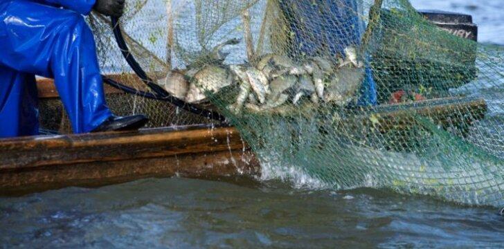 Žvejai verslininkai mano, kad verslinė žvejyba nėra kenksminga