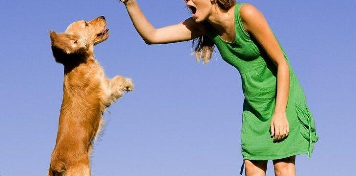 Kaip šuns dresavimo principus pritaikyti vyrui?