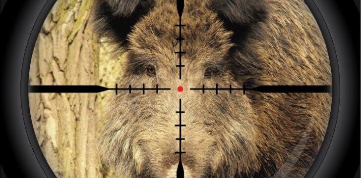 Medžiotojai žvėris nori gerai matyti ir naktį