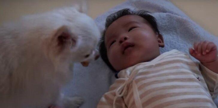Norėdama nuraminti kūdikį, šunytė atiduoda jam savo skanėstą