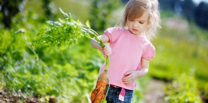 Gėrybės iš močiutės daržo gali padovanoti puokštę ligų