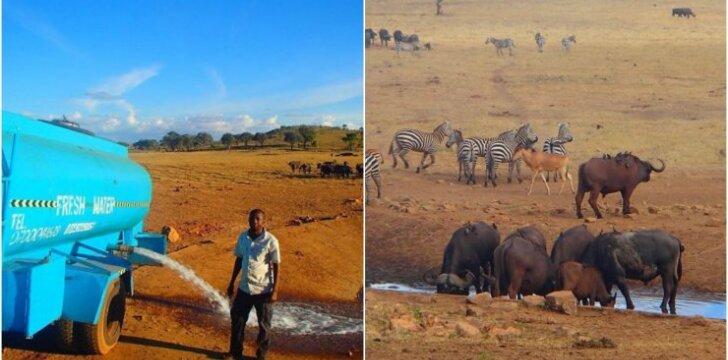 Vyras kasdien gyvūnams gabena vandenį