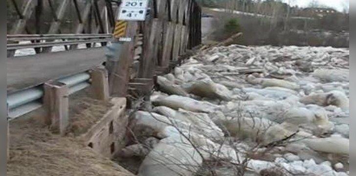 Tiltas per ledonešį