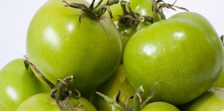 GARDUMĖLIS ŽIEMAI: konservuoti žali pomidorai
