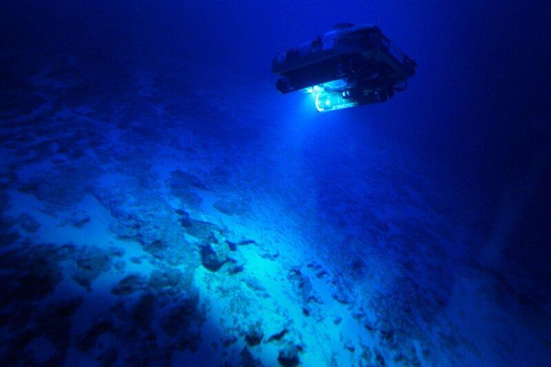 Šylantis klimatas keičia vandenynų ekosistemas.