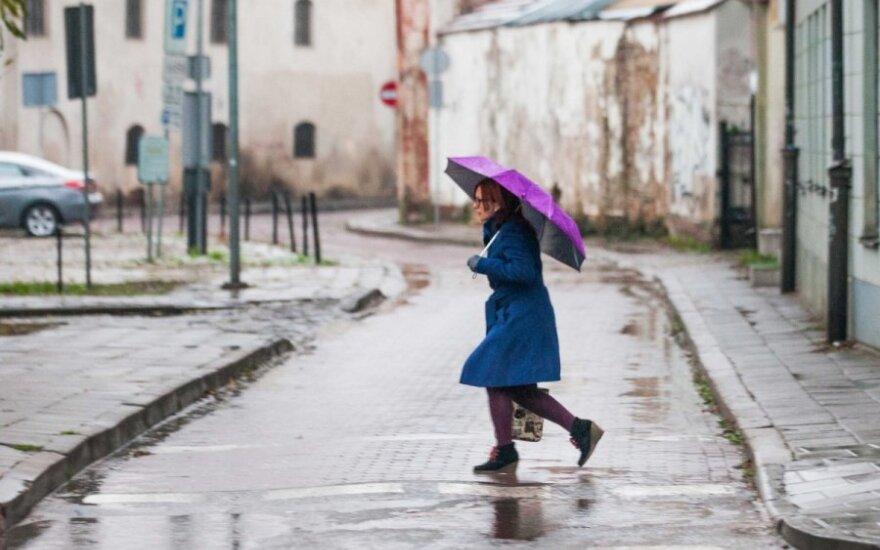 Savaitės orai: kai žiema traukiasi
