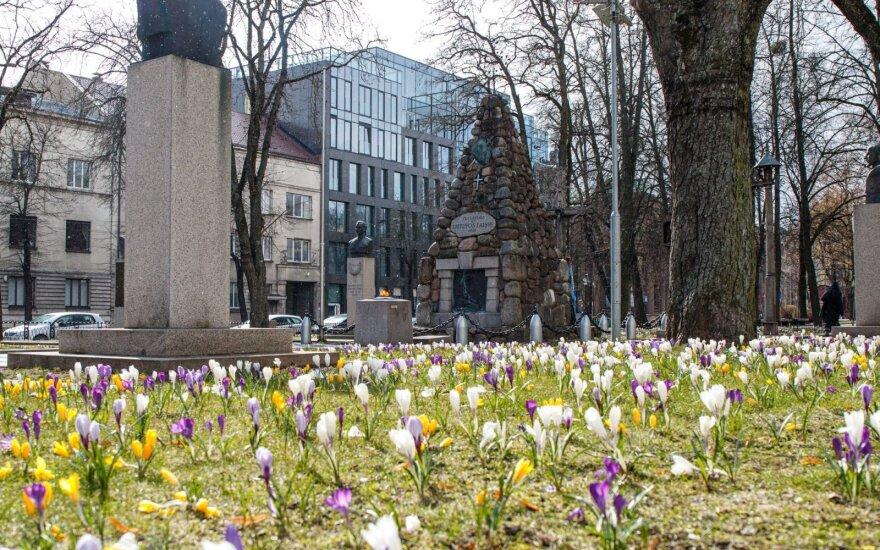 Pasigrožėkite: Kaunas pasidabino pavasariniais žiedais
