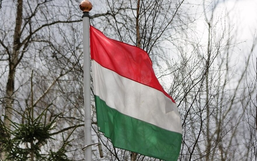 Lithuania's new ambassador to Hungary receives credentials