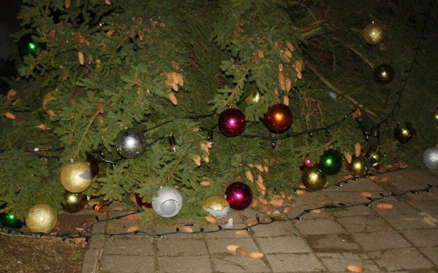 Kalėdų eglė Šiauliuose neatlaikė vėjo