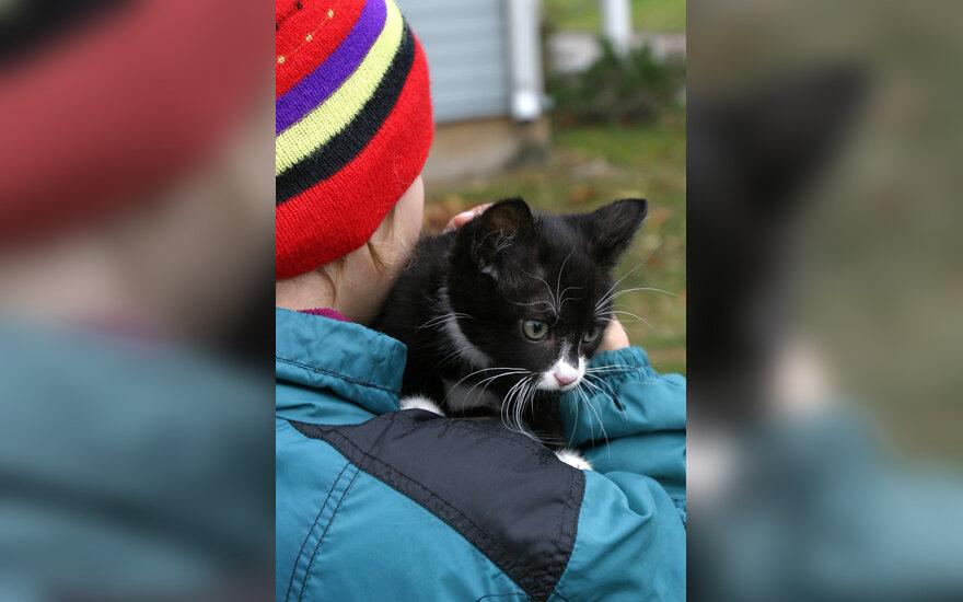 Vaikas rankose laiko katiną