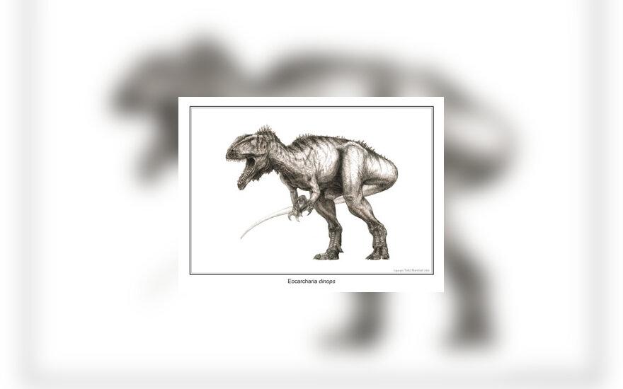 Dinozauro Eocarcharia dinops rekonstrukcija