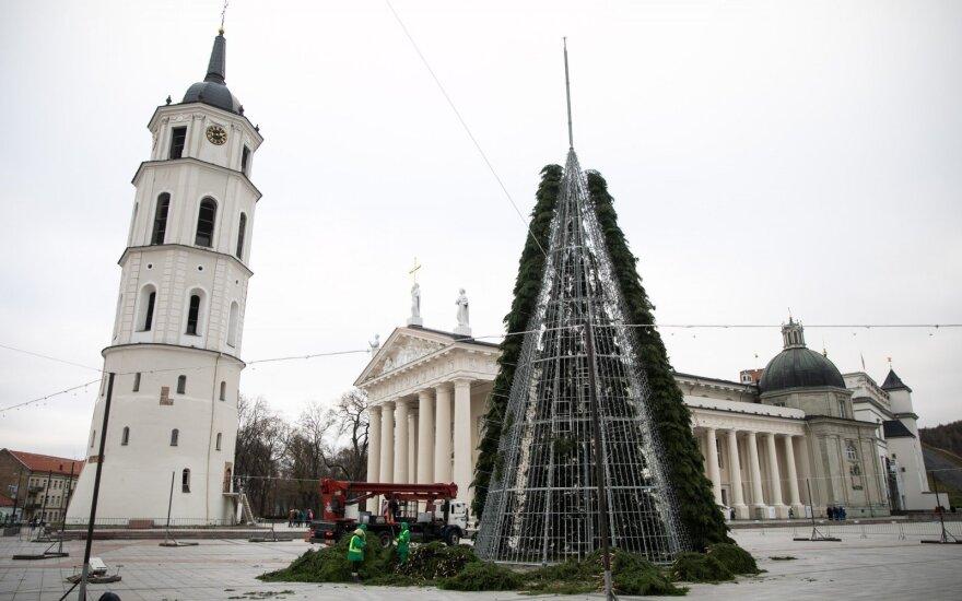 Katedros aikštėje statoma Kalėdų eglė