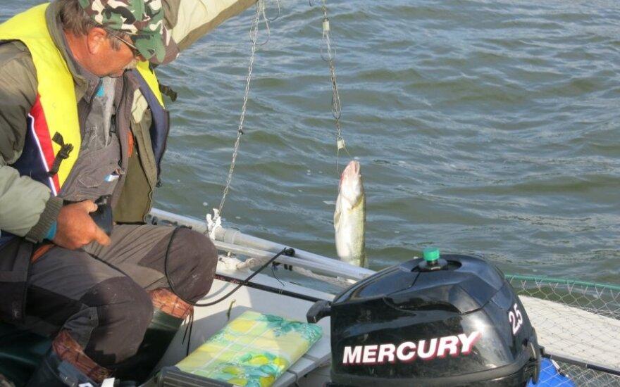 Žvejai turėtų žinoti apie laikinus ribojimus