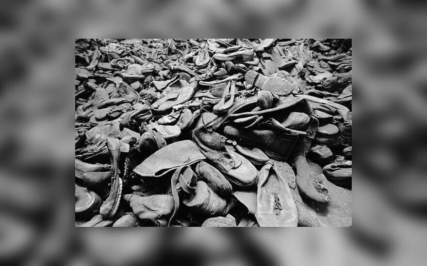 Rusijos ambasada: straipsnis apie Holokaustą yra istorijos perrašymo ir nacizmo teisinimo Lietuvoje pavyzdys