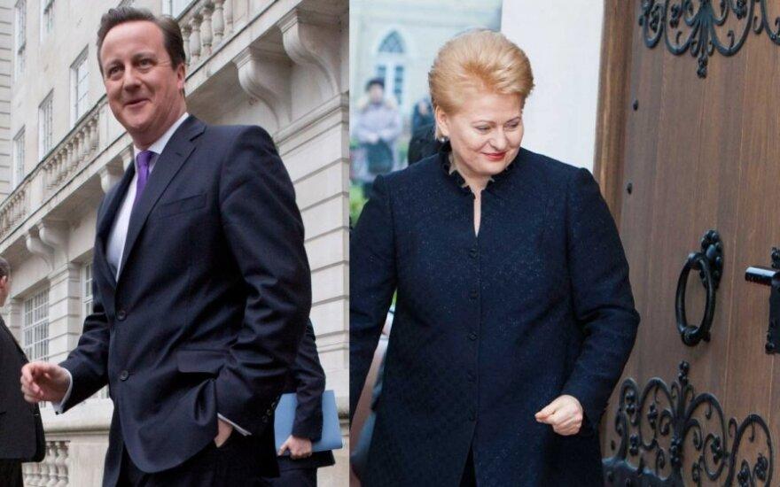 David Cameron, Dalia Grybauskaitė