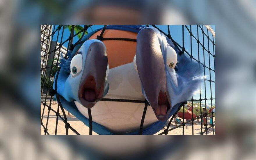 """Kadras iš animacinio filmo """"Rio"""""""