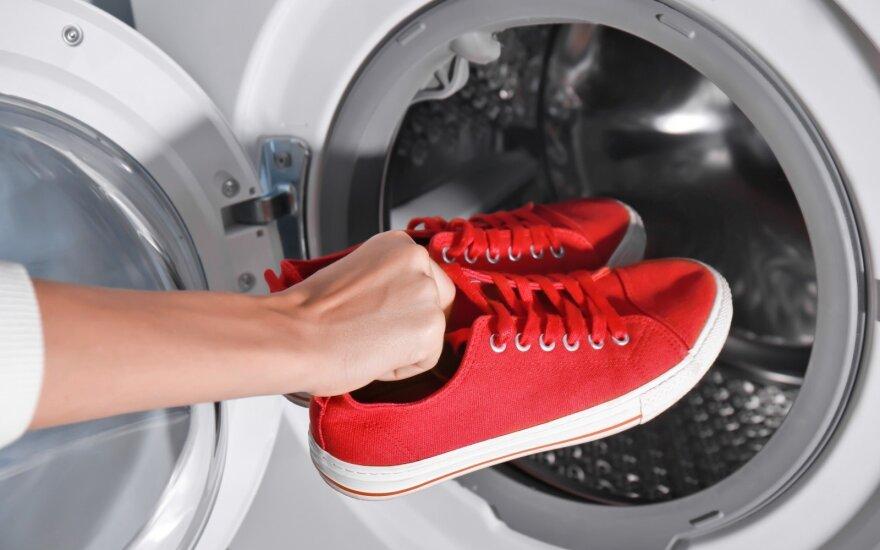 Avalynės skalbimas