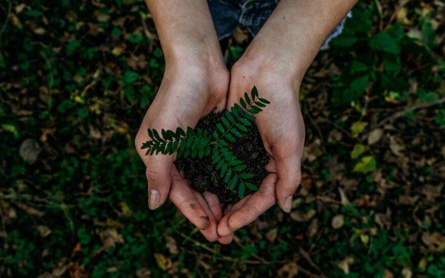 Žalias ar rudas: bankai turės atskleisti savo paskolų portfelio tvarumą