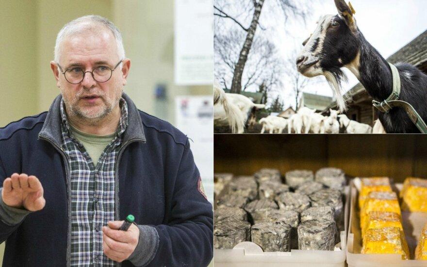Kaip Lietuvoje gaminami sūriai - nuo idėjos iki sudėtingiausių receptų