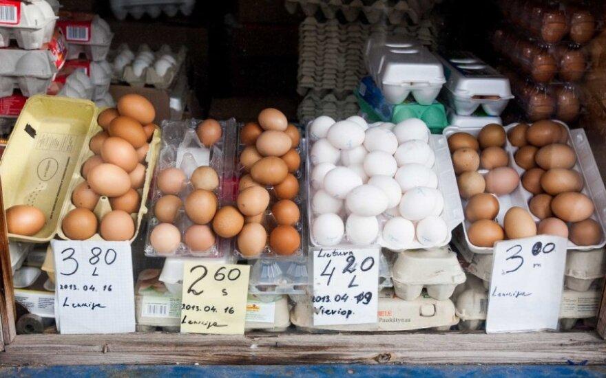 Ką reikėtų žinoti renkantis kiaušinius?