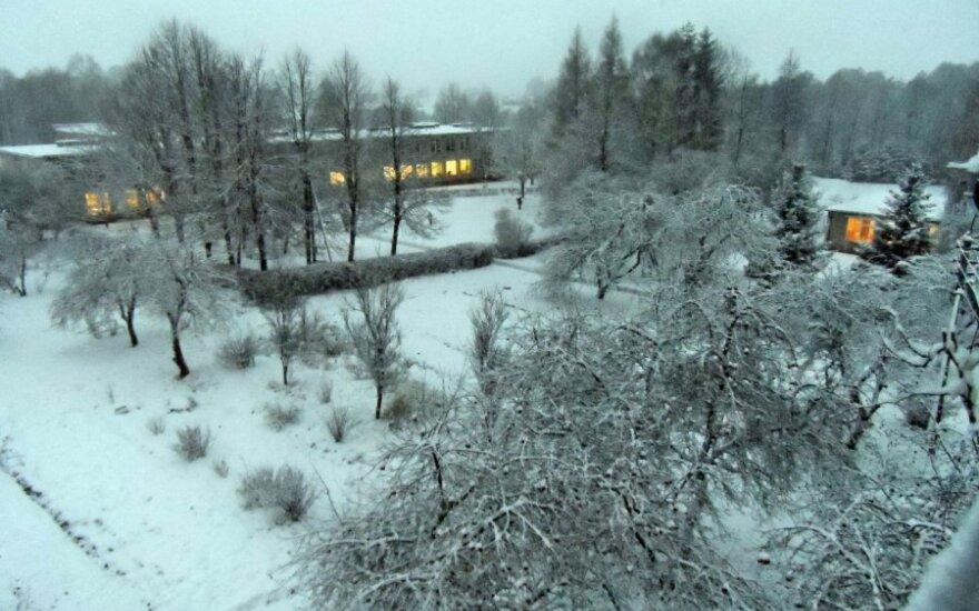 Pasidalink! Pirmasis sniegas Lietuvoje!