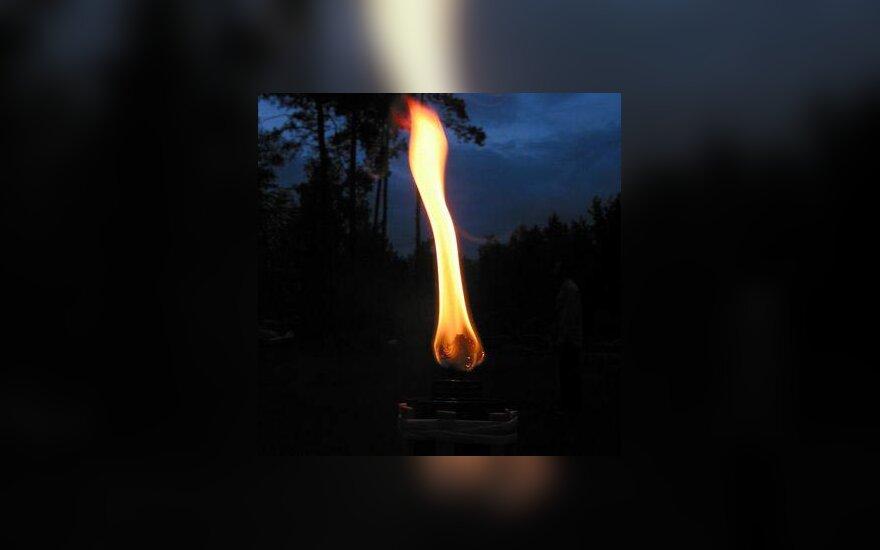 Ugnis, liepsna, laužas, gaisras