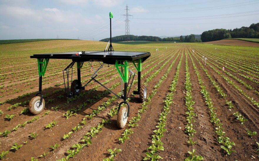 Ateitis jau čia – robotai, purškiantys kiekvieną piktžolę ir savarankiškai dirbantys traktoriai