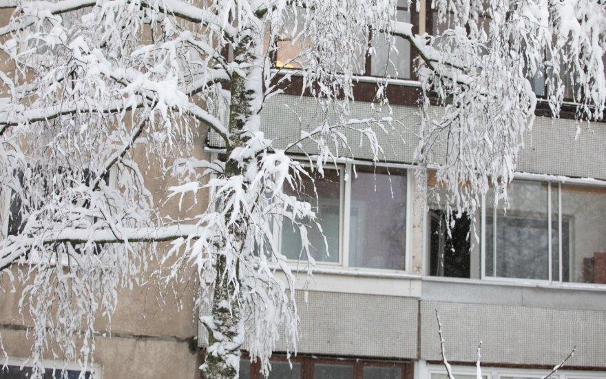 Gyventojai šaukiasi pagalbos: jau trys dienos be elektros, o gedimų tik padaugėjo