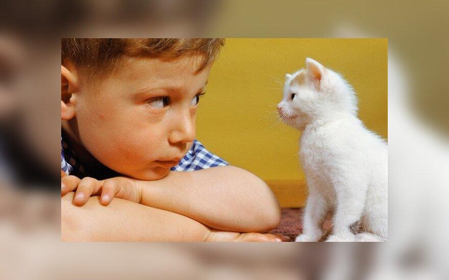 Šunys ir katės vaikams sumažina alergijų riziką