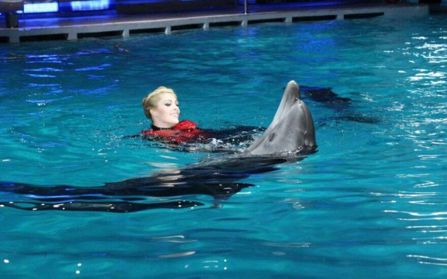 """Projektas """"Žvaigždės ir delfinai"""""""