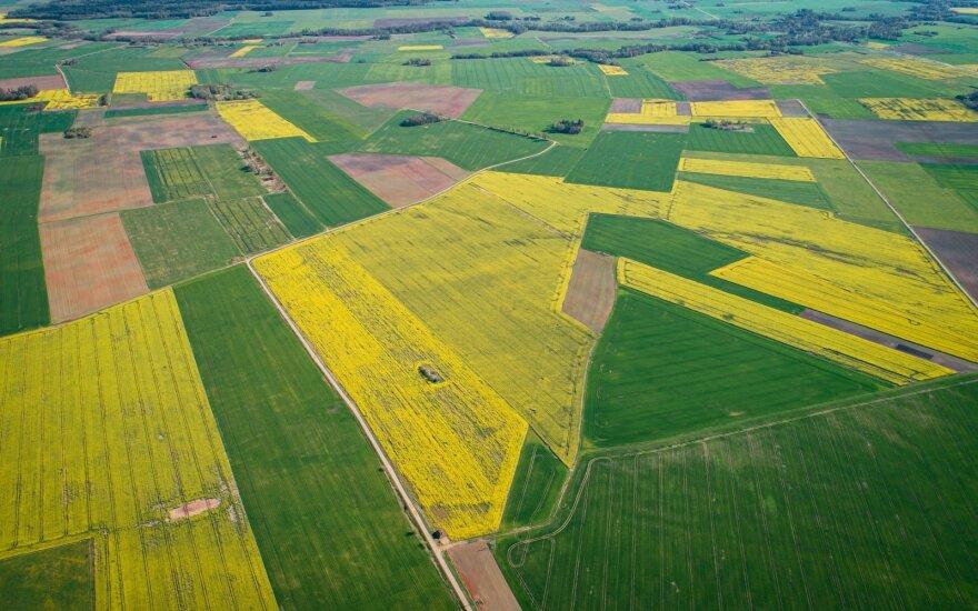 Jaunieji ūkininkai pasipiktinę: likome be valstybinės žemės, ji atiteks stambiesiems