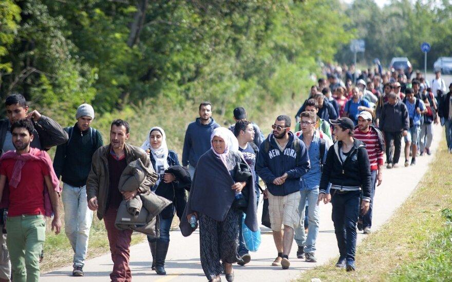Migrantų krizė: darbdaviai pigia darbo jėga apsidžiaugė per anksti