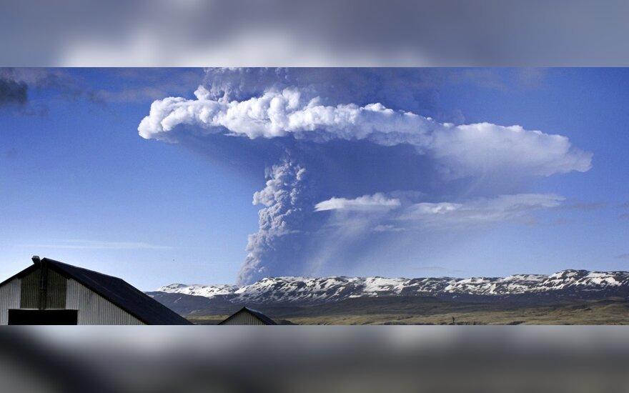 Ugnikalnis Islandijoje sukėlė didžiulį pelenų debesį
