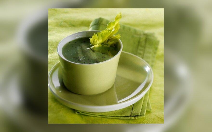 Salierų sriuba