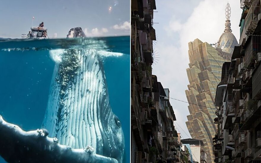 """""""National Geographic"""" kelionių fotografijų konkursas parodė retai matomą mūsų planetos pusę"""