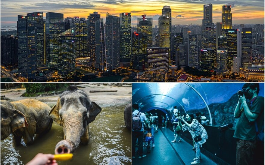 Singapūras