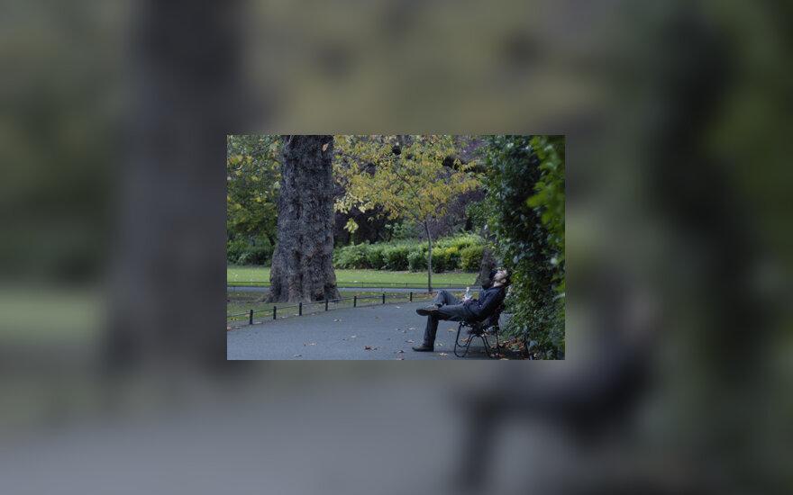 Parkas, ramybė
