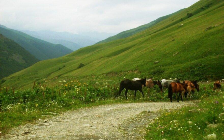 """""""Mano atostogų atradimai"""" VII: Nuotykiai Gruzijoje"""