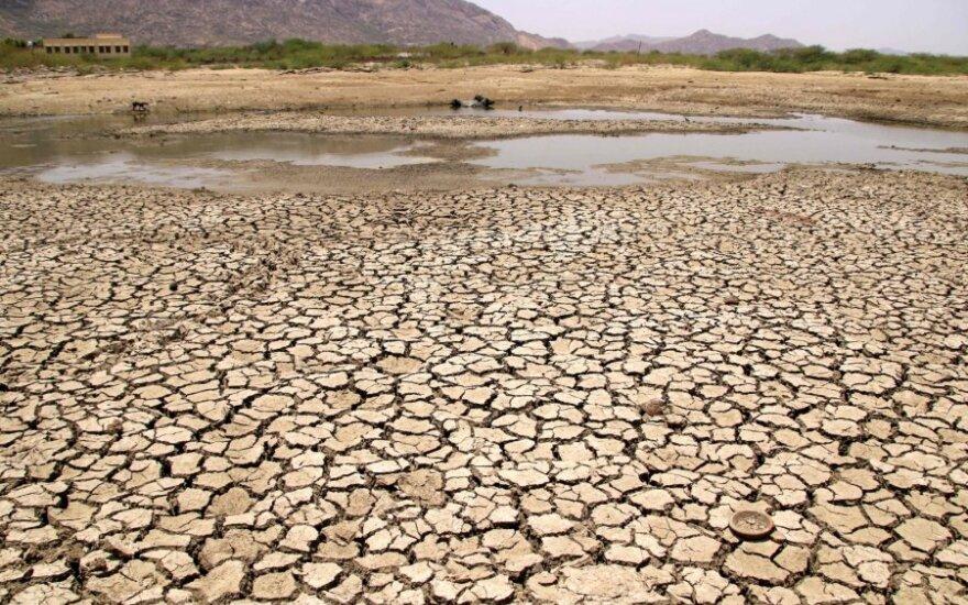Karščio bangos vis dažniau smogia Indijai