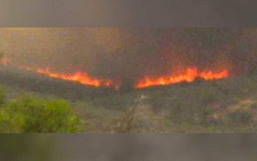 Arizonoje per miškų gaisrus žuvo 19 ugniagesių