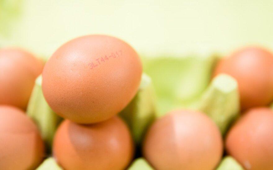 Įsidėmėkite: štai, ką reiškia skaičiai ant kiaušinių