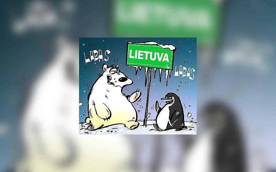 Lietuvoje užfiksuota daugiau kaip 20 laipsnių šalčio
