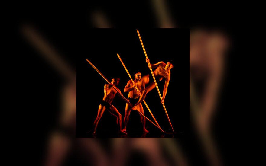 """JAV šokėjų trupė """"Momix"""" vaidina savo naujajame spektaklyje Ispanijoje."""