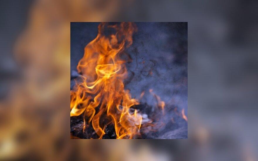 Rusijoje įsisiautėję miškų gaisrai nusinešė mažiausiai 25 žmonių gyvybes