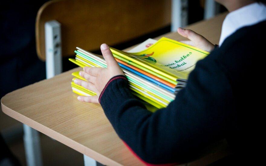 Sostinės taryba svarstys, ar keisti trijų tautinių mažumų mokyklų statusą