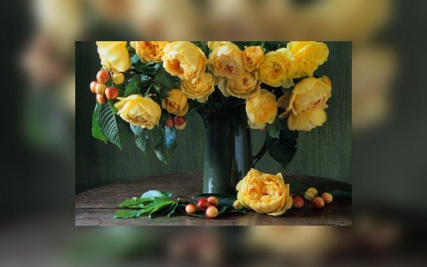 Gėlės, puokštė