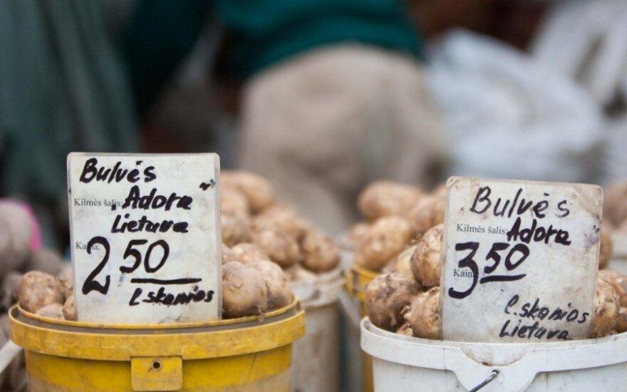 Rusija uždraudė bulvių importą iš Lietuvos